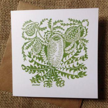 Banksias - greetings card