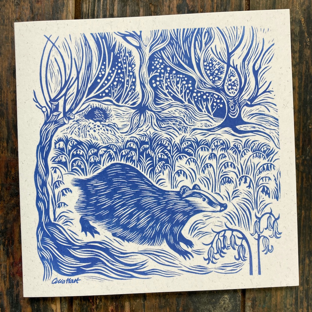 badger in the bluebells