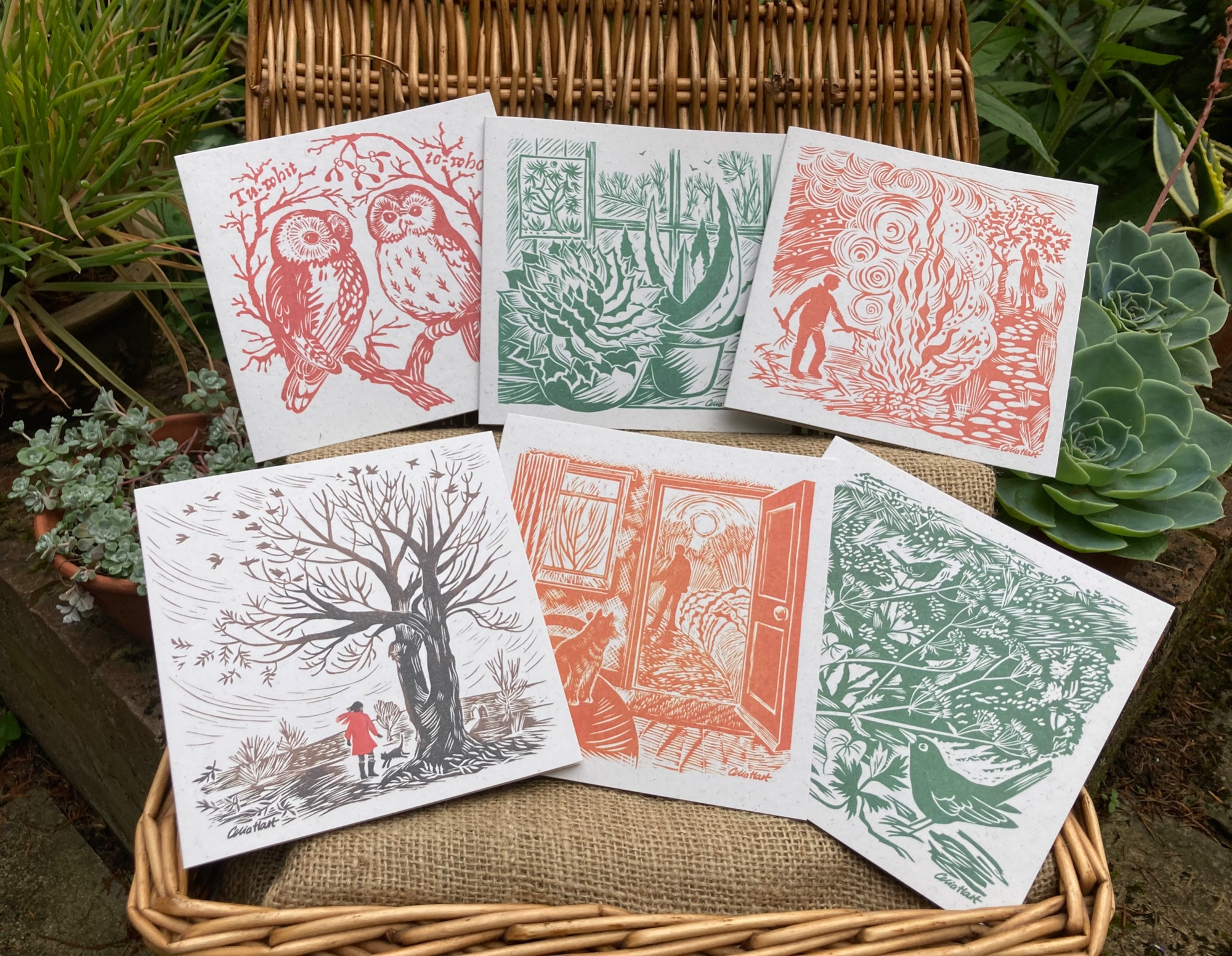 New eco-friendly cards for spring