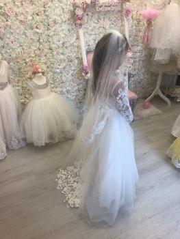 Mid length scatter lace & Diamanté  veil