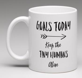 'Daily Goals'