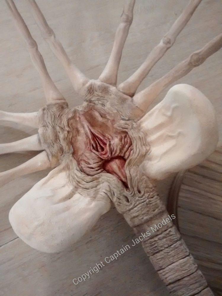 Ridley Scott's Alien - Facehugger - Collectors Display Model