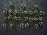 Foam Tree Pack - For Diorama, Model Railway, Display Model Scenes & Miniatures - PACK G