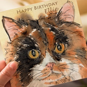 Personalised Tortoise-shell Cat Greeting Card