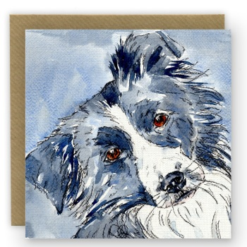 PP04 Border Collie