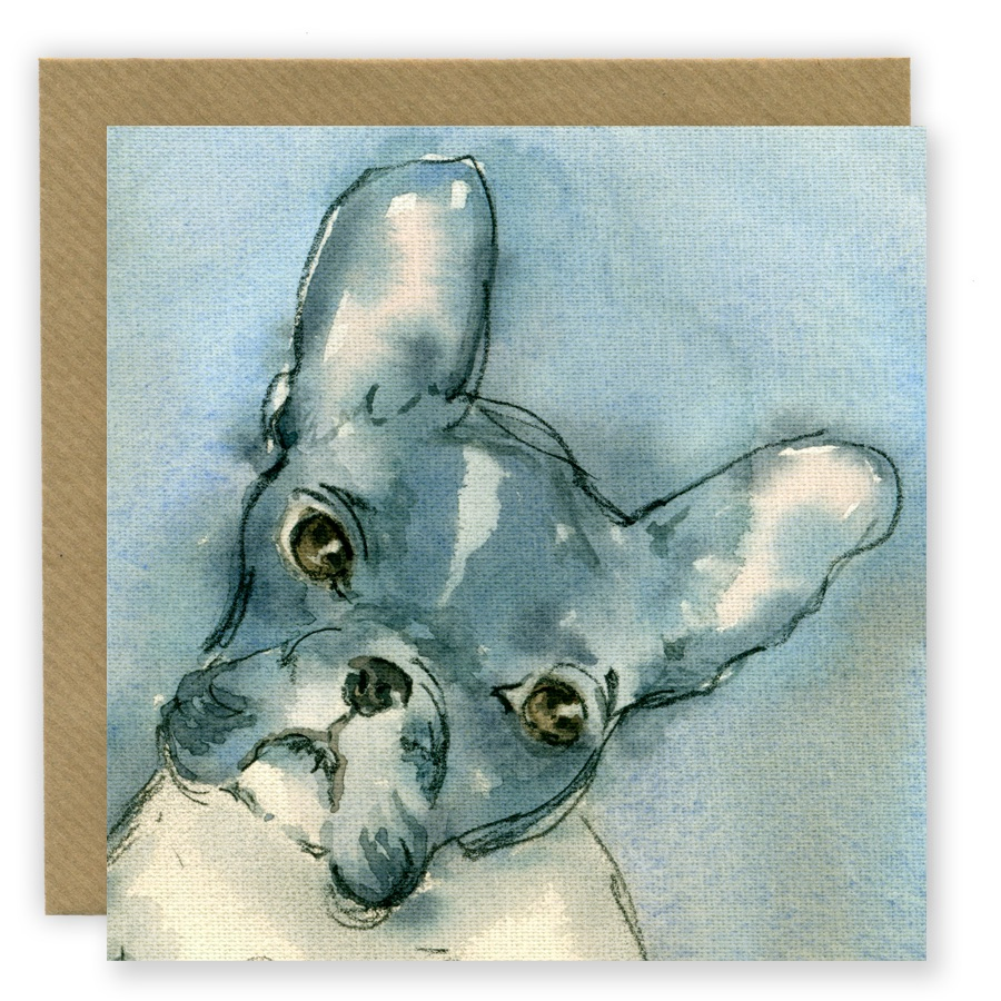 PP20 French Bulldog
