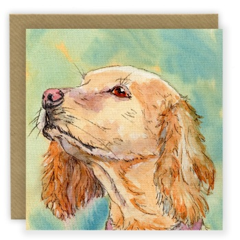 PP23 Golden Cocker Spaniel