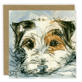 PP64 Jack Russell Wire Haired
