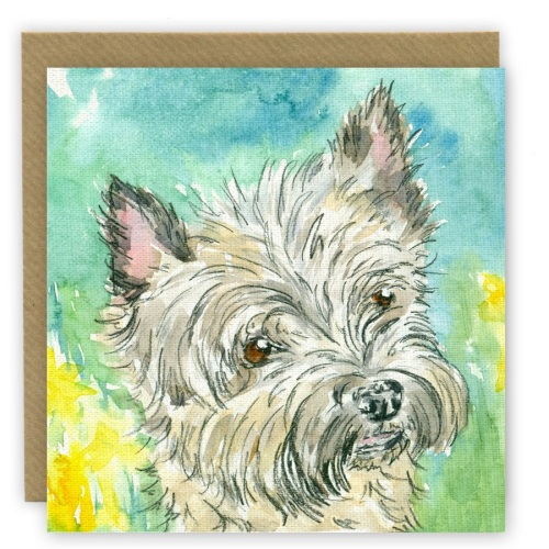 PP61 'Milly' Cairn Terrier