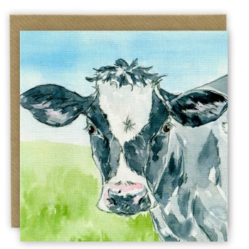 PP11 Cow