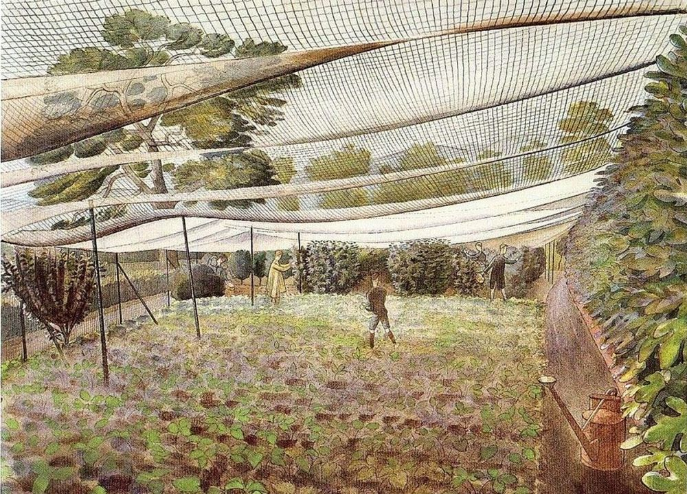 Eric Ravilious: Strawberry Nets, 1932