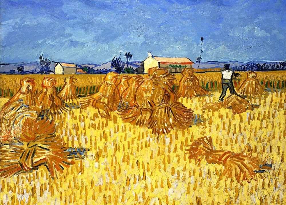 Vincent van Gogh: Corn Harvest in Provence, 1888