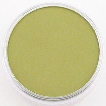 Bright yellow green shade pan pastel
