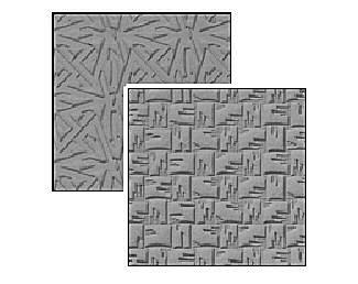 Lisa Pavelka's Symmetry