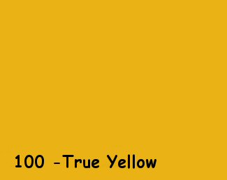 True Yellow 100 350gms Professional