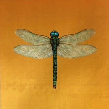 Velvet Chenille Dragonfly Cushion- Gold