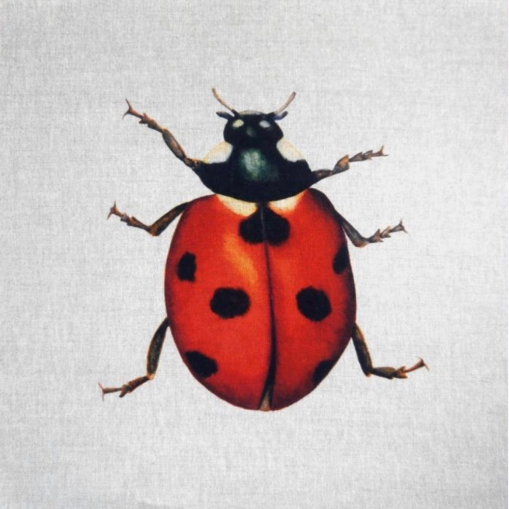 Linen Ladybird Cushion