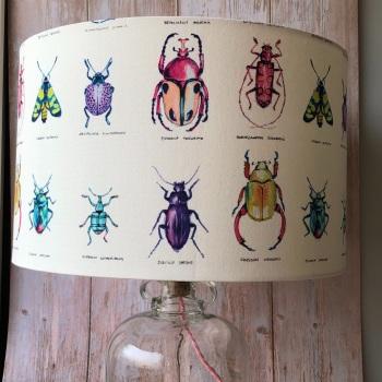 Lampshade - Specimen Beetles