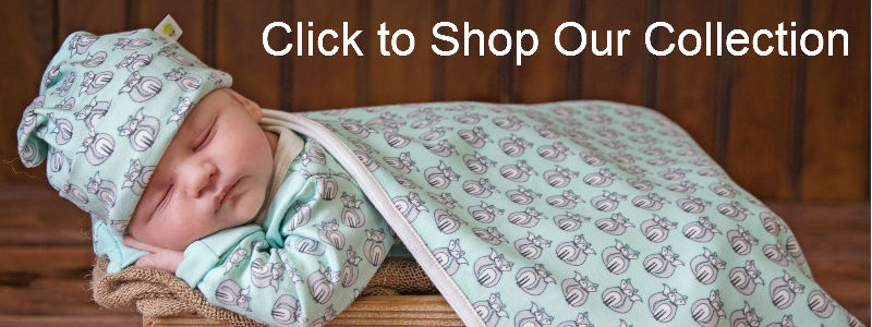 Click to Shop Our Collection banner 800x300