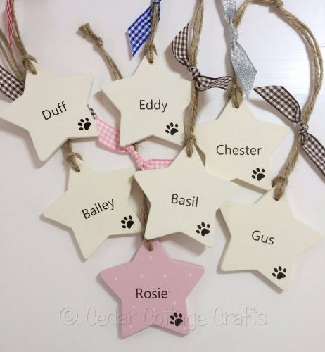 Personalised Pet Star
