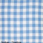 Gingham - Chambray copy
