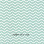 Chevron Narrow - Mint