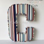 C  - Ex large Funky Stripe Red & Blue