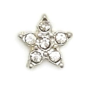 Crystal Star Floating Locket Charm