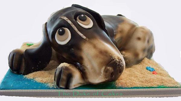 olly-dog