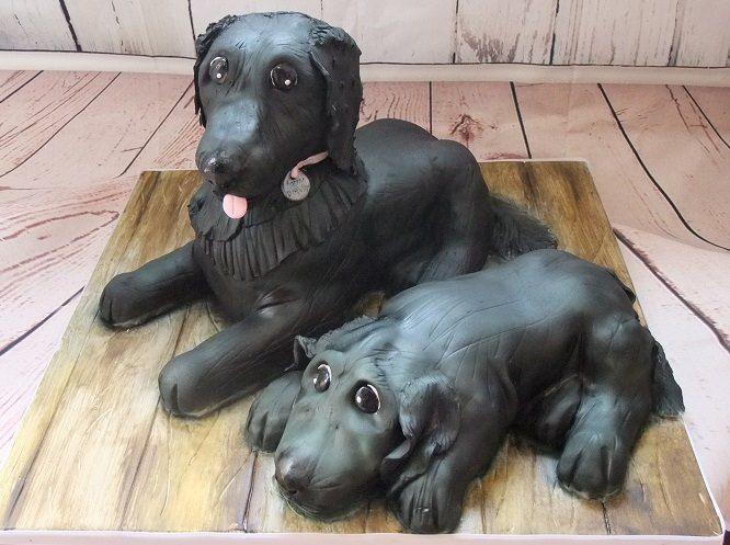 3D Dog cake.