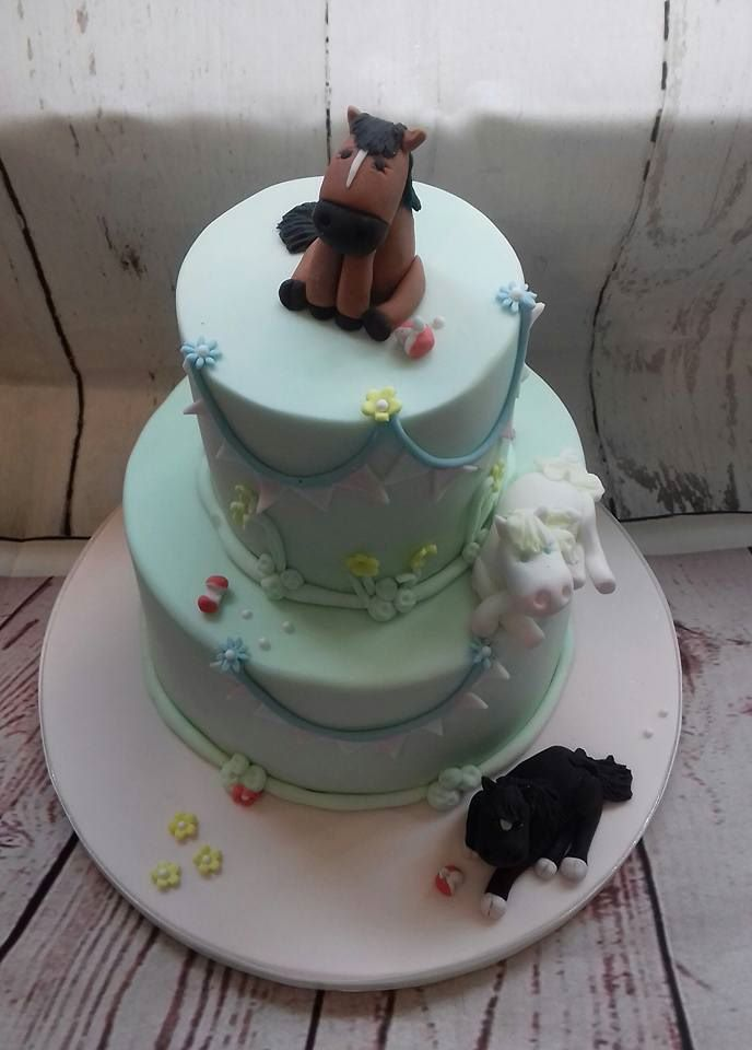 2 tier pony cake best pic
