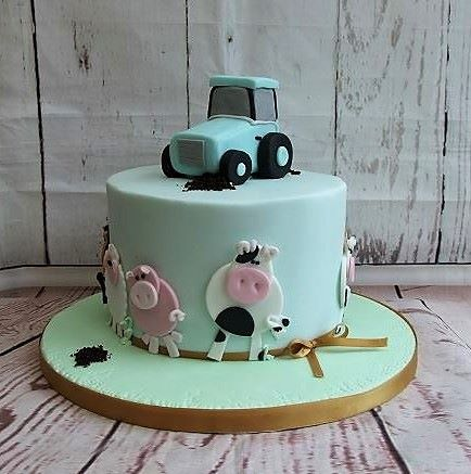 farm yard cakes for boys