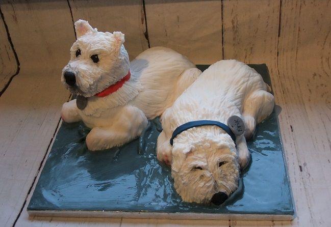 dog cakes Bath