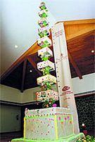 christmas-cake-uday-samudra-hotel