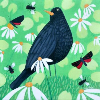 """Buzzing the Blackbird"" Blackbird and red tailed bee medium art print"