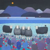 """Contemplation"" Herwick Sheep medium print"