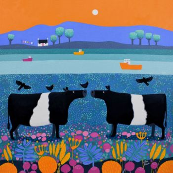 """Tangerine Dream"" Medium Belted Galloway Art Print"