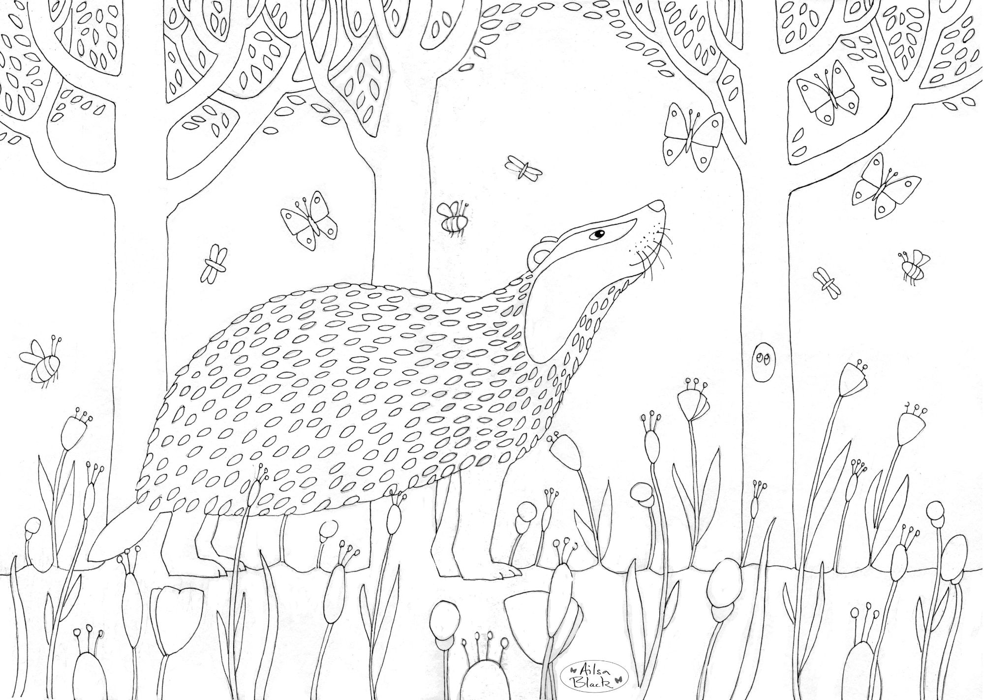 Free badger for colouring in