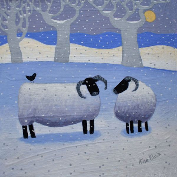 Black faced sheep on a snowy hill
