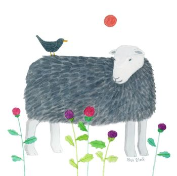 Herdwick Sheep watercolour pen and ink painting