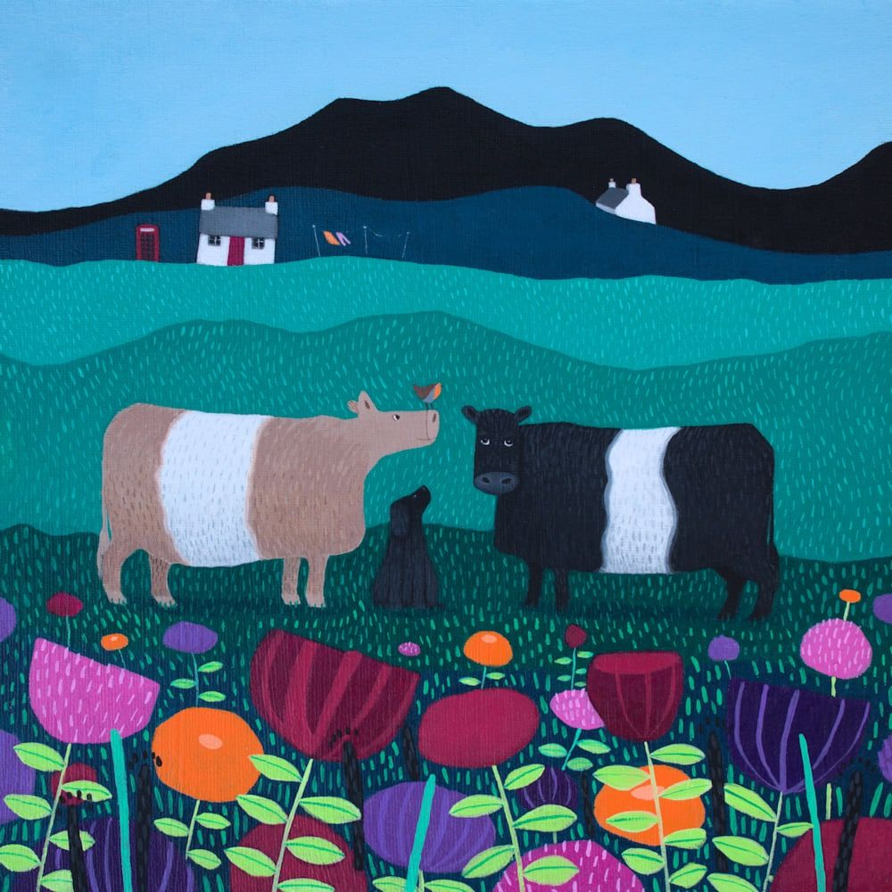 A painting of two belted Galloway Cattle in flowers direct from Scotland