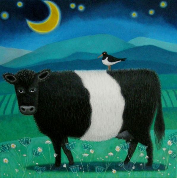 a belted galloway cow grazes by moonlight in this painting by scottish artist ailsa black