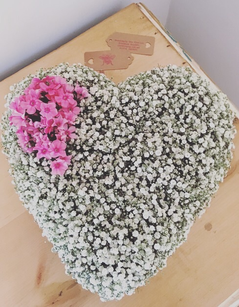 "12"" Loose Gypsophila Heart"