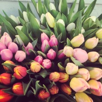 Easter Spring Hand Tied Workshop