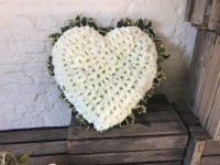 Large based heart with Holly edge