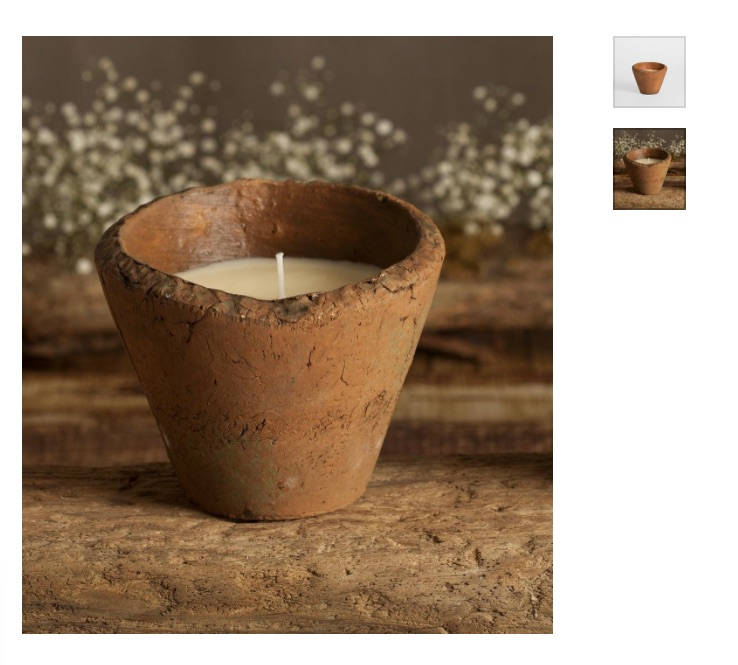 Wild Gorse Scented Candle Pot Large