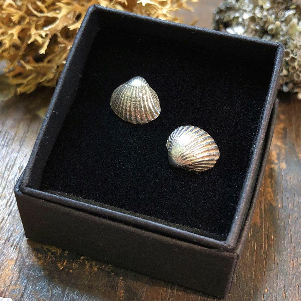 Solid Silver Sea Shell Earrings