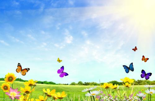 Butterfly Hugs US/UK 50ml
