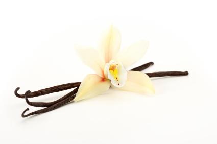 Vanilla Lip Balm Flavour Oil (Allergen Free) 25ml (BN C0662) *NEW*