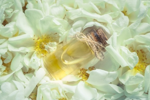 Oud Rose 50ml (BN 5658)